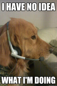 dog on a recruitment call